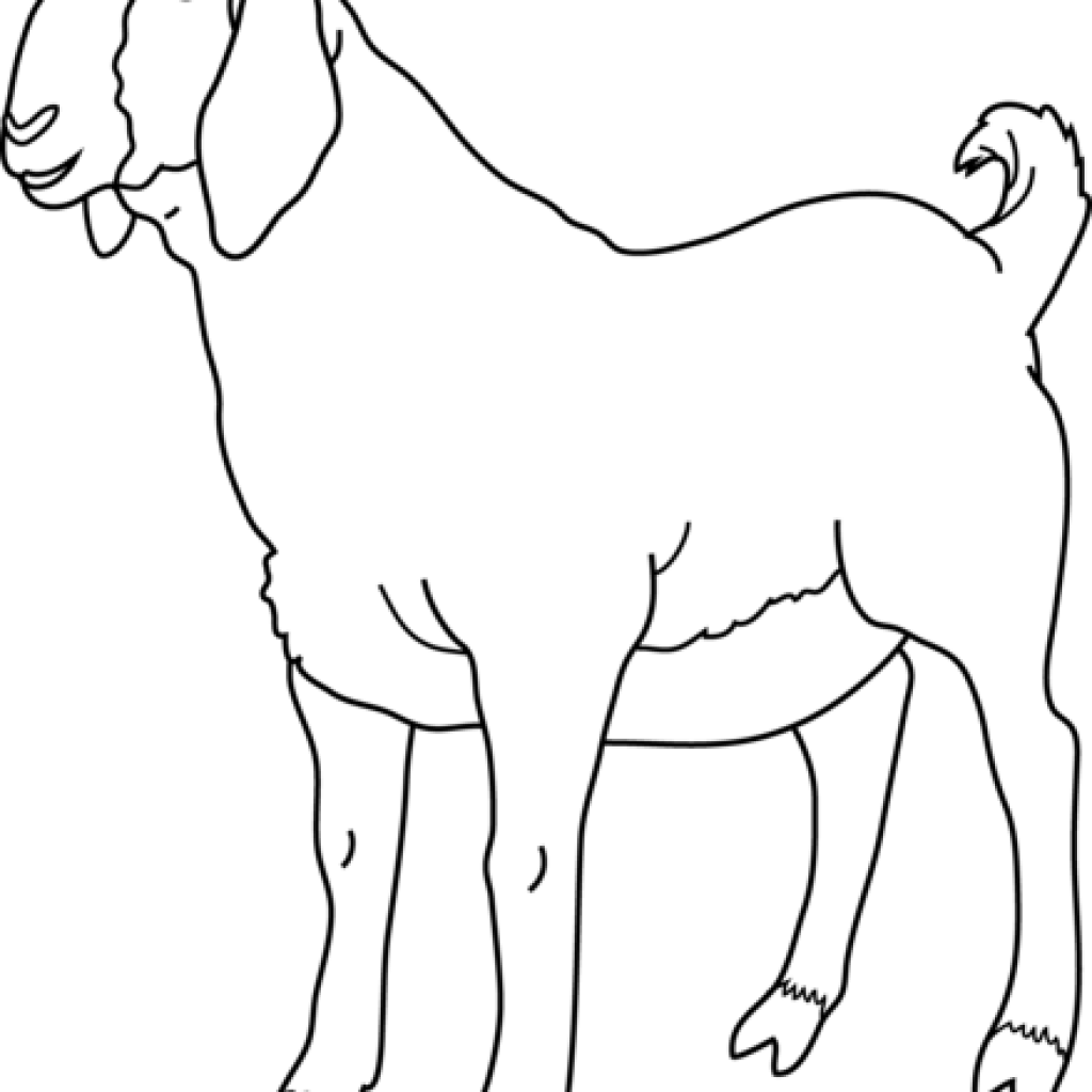 banner free download Fire hatenylo com music. Goat clipart black and white