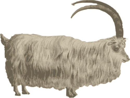 download Goat clipart grey object. Free on dumielauxepices net