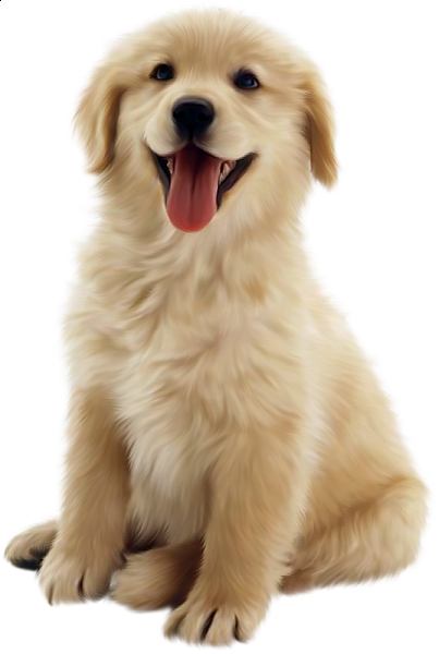 clip freeuse download Golden retriever clipart. Cute dog you re