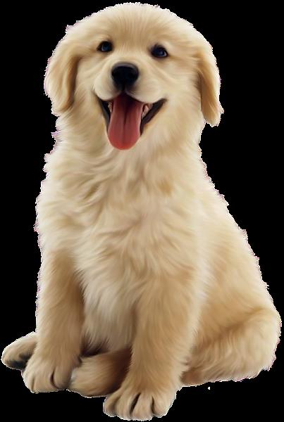 clip freeuse download Cute dog you re. Golden retriever clipart