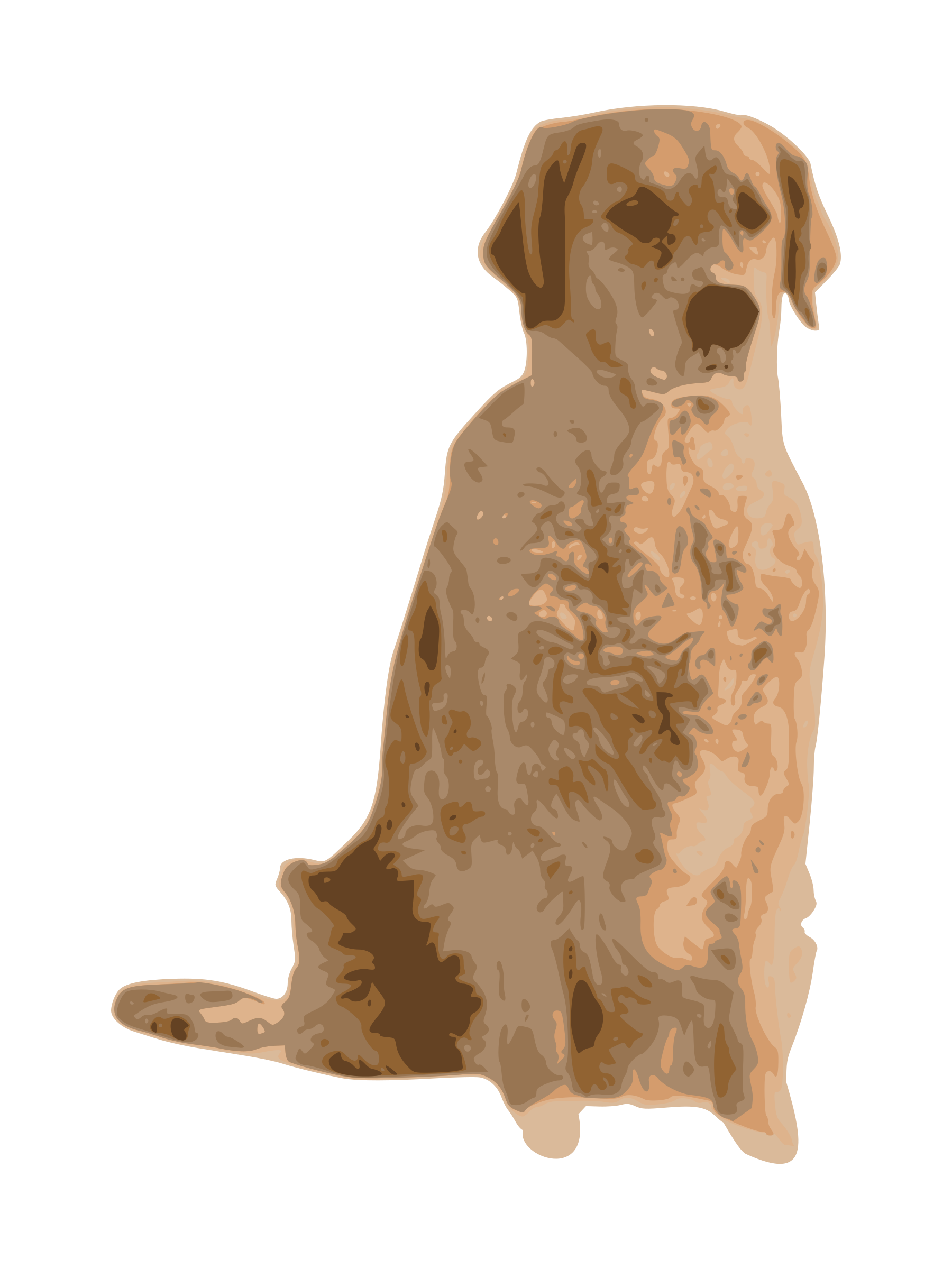 clip art black and white download . Golden retriever clipart behind
