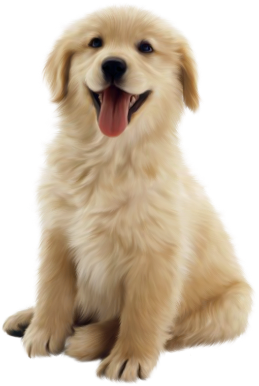 graphic freeuse stock Golden retriever clipart one dog. Chiens puppies wallpapers perros
