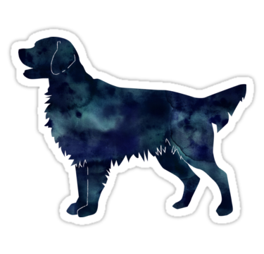 picture library library And flat coated black. Golden retriever clipart realistic dog