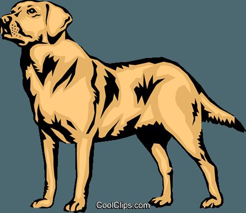 jpg free Labrador at getdrawings com. Golden retriever clipart vector