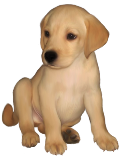 clip black and white download Painted small labrador png. Golden retriever clipart yellow lab