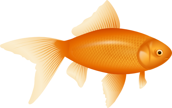 picture black and white download Clip art at clker. Goldfish clipart.