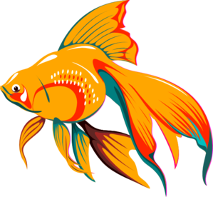 png transparent library Gold fish clip art. Goldfish clipart file