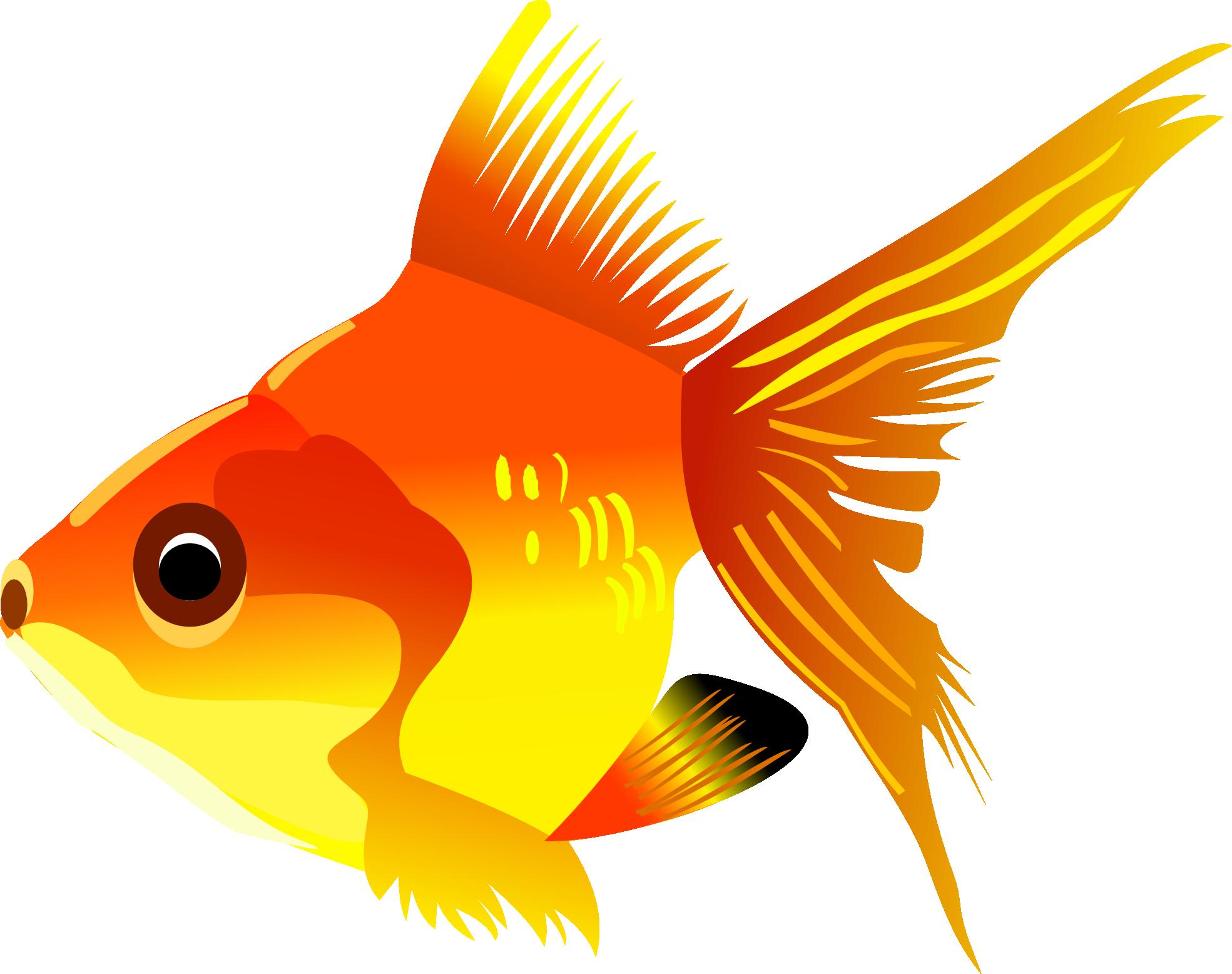 clipart free D fish free on. Goldfish clipart jpeg