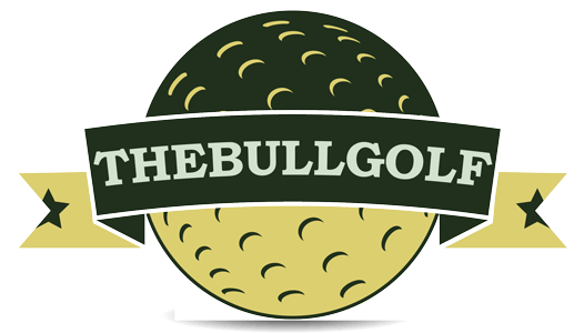 jpg royalty free download Top best golf clubs. Golfer clipart beginner