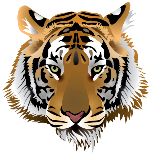 png royalty free download Head png clip art. Good clipart tiger body