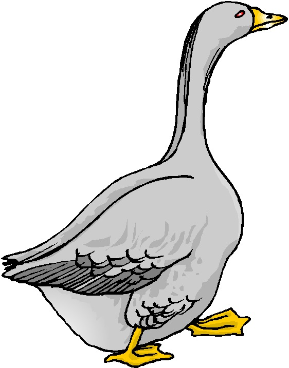 royalty free library Goose clipart. Free cliparts download clip.