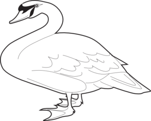 png library library Goose clipart abigail. Vector frames illustrations hd