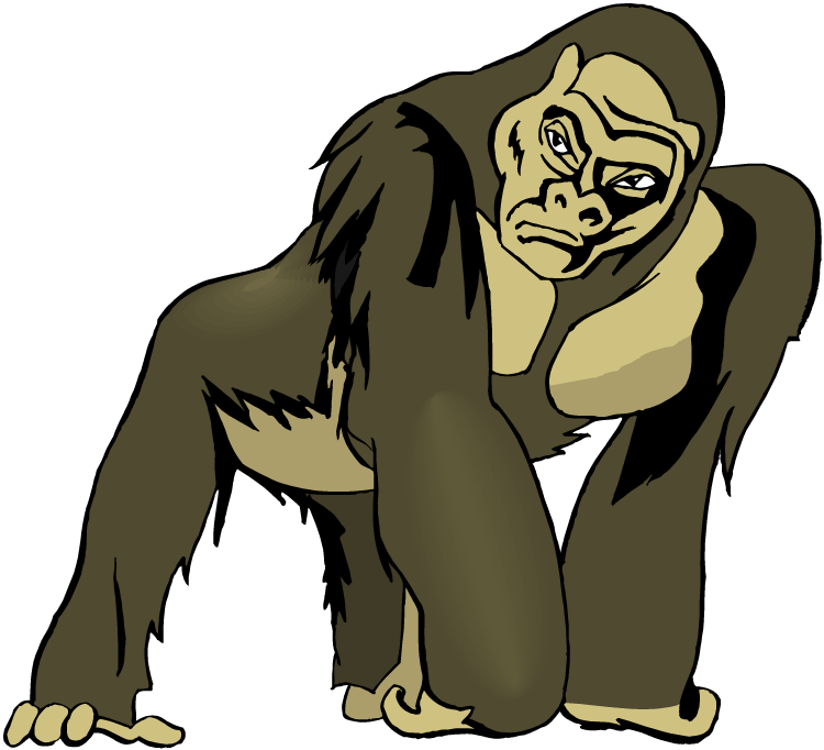 picture free Gorilla clipart ivan. Big animal free on