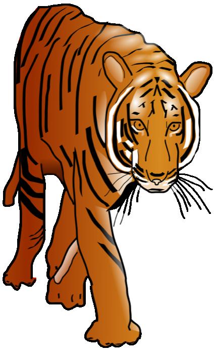 clip art freeuse download . Graduation clipart tiger
