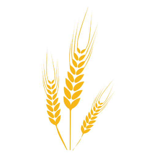 clip art transparent stock Wheat food plant transparent. Grain clipart feather