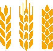 graphic transparent Two track malting company. Grain clipart malt