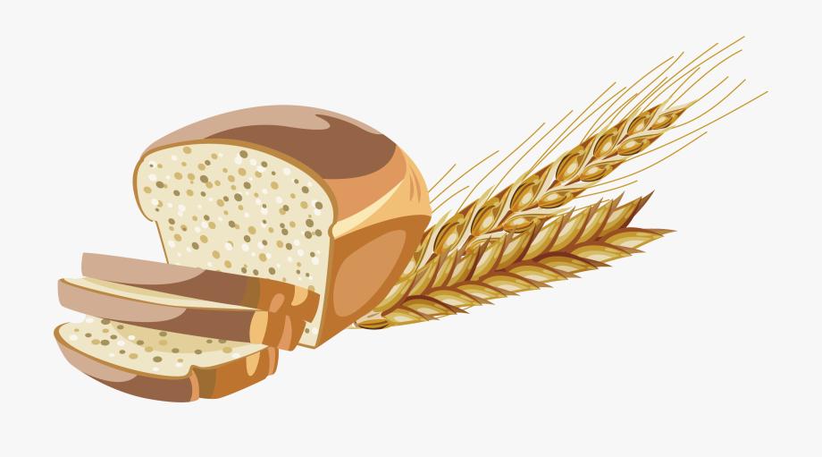 vector royalty free download Grains clipart. Wheat flour whole grain.