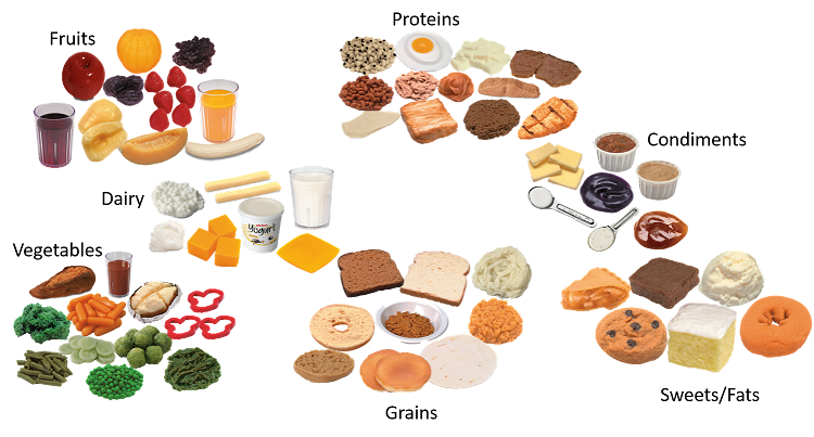 vector freeuse library Combo food model kit. Grains clipart dairy group