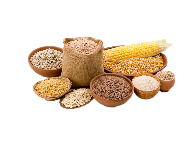 picture freeuse stock Transparent png mart. Grains clipart grain food group