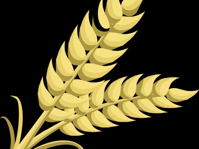 transparent Grains clipart grain food group. Cliparts foods free download