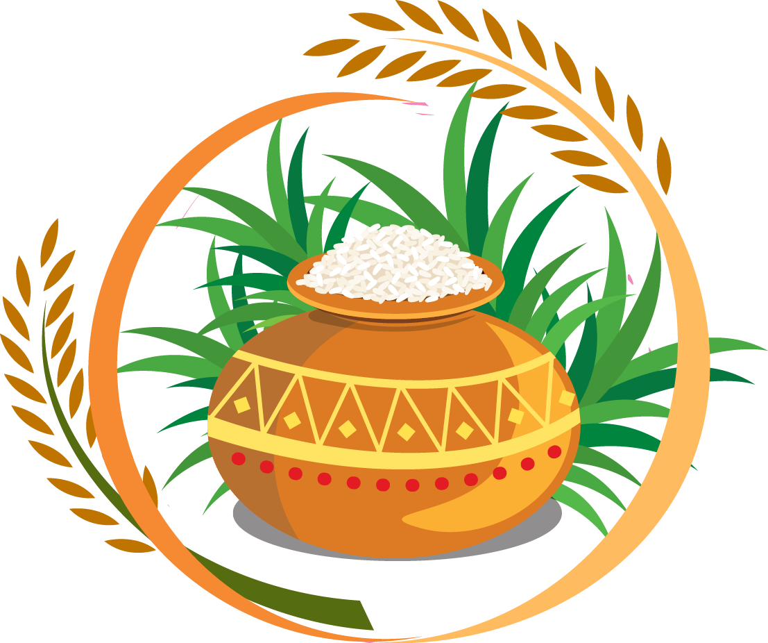 picture black and white library Thai pongal harvest festival. Grains clipart nut