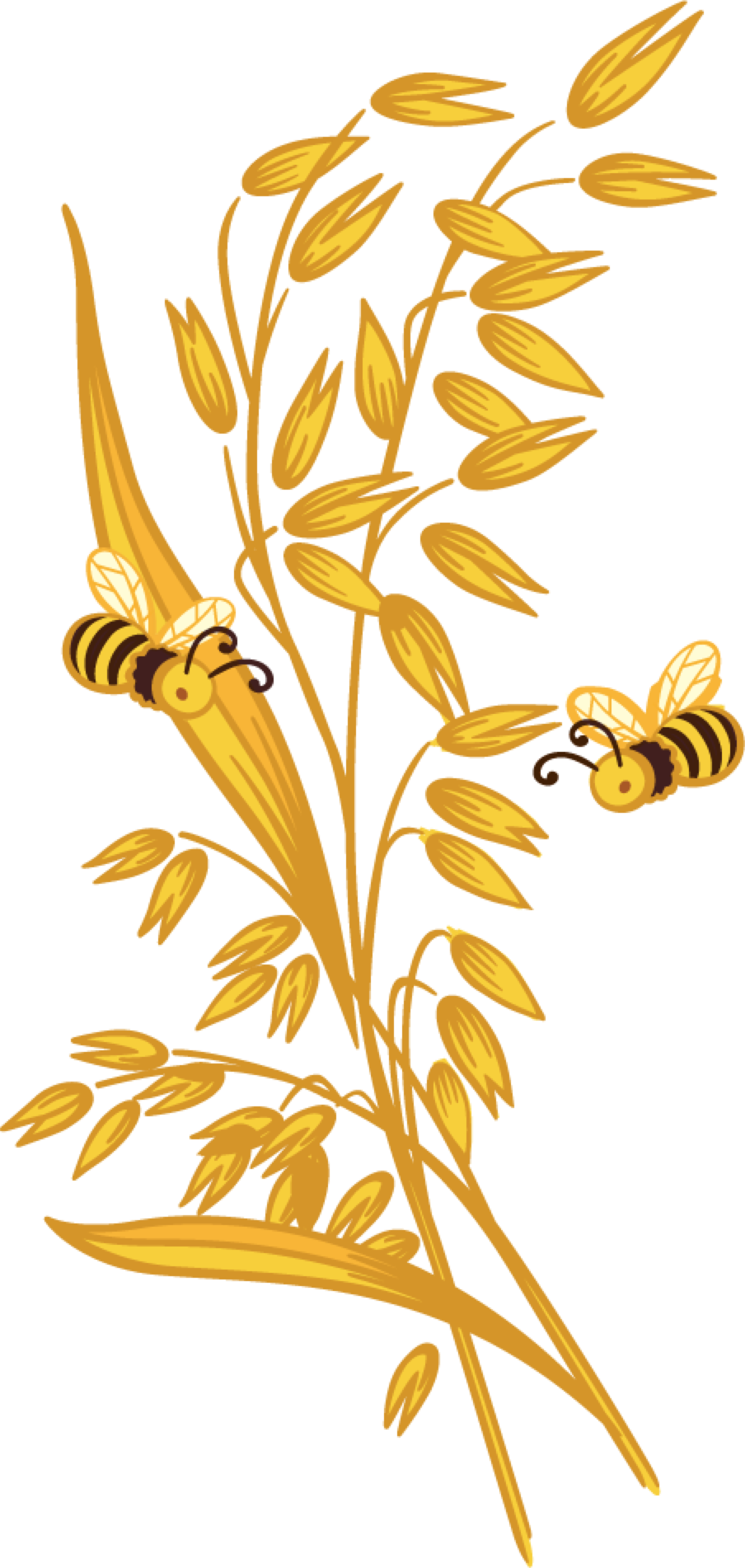 transparent stock Honey country harvest choatandhoneydfacehr. Grains clipart oats