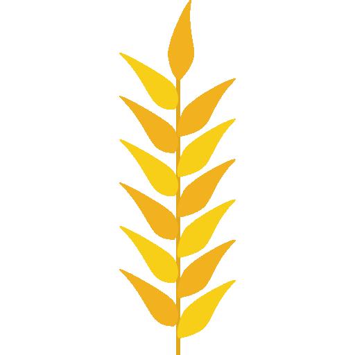 free Grain nature food icon. Grains clipart wheat plant