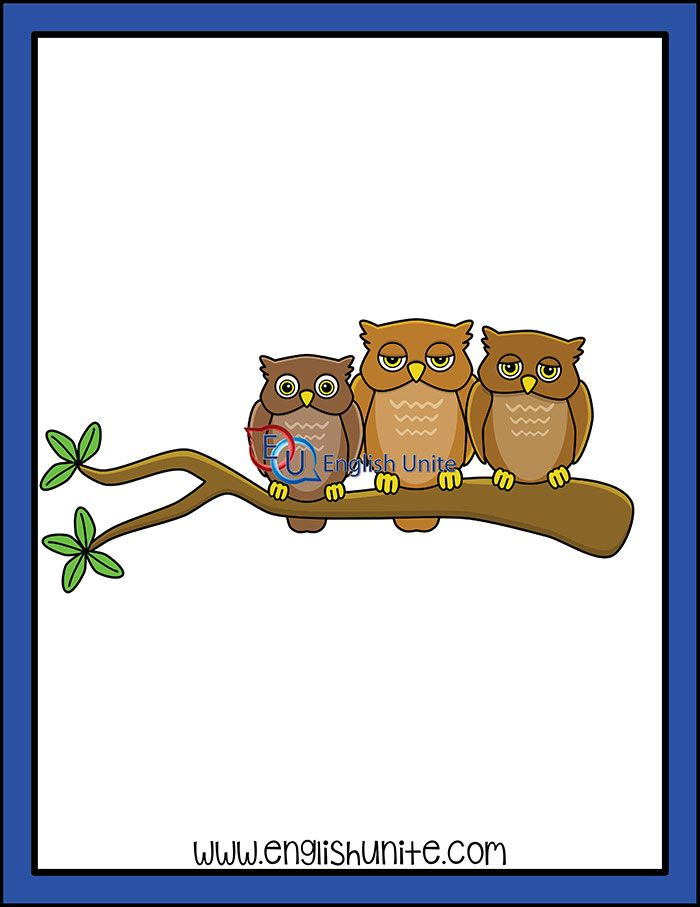 png black and white stock Collective noun owls clip. Grammar clipart owl