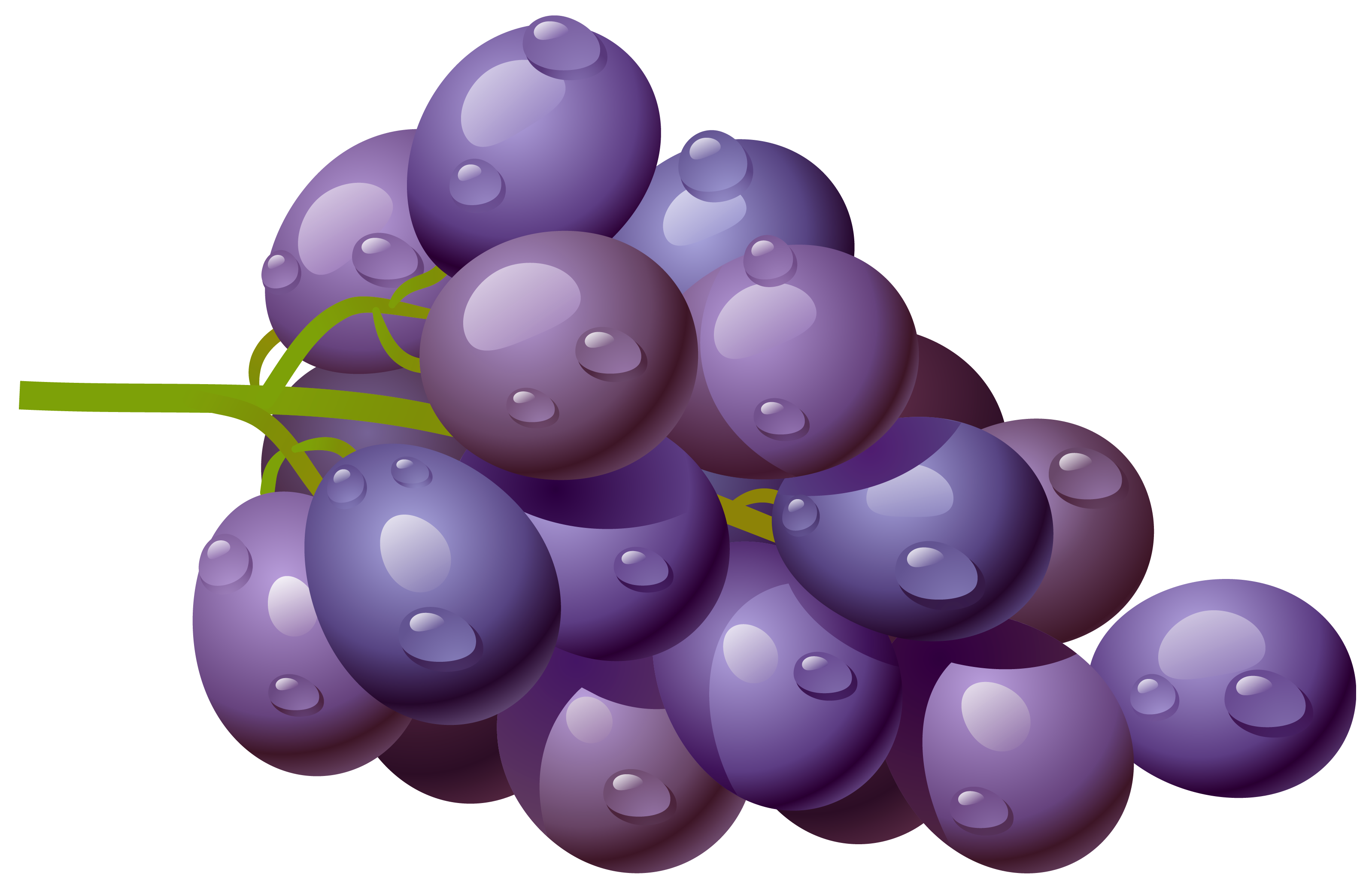 svg free library Grapes clipart real purple. Grape png picture gallery