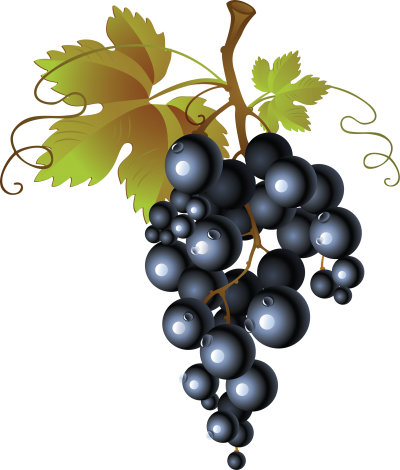 clip art black and white library Grape clipart illustration. Grapes gallery isolated stock