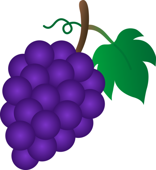 freeuse Pin by marina on. Grapes clipart grape soda