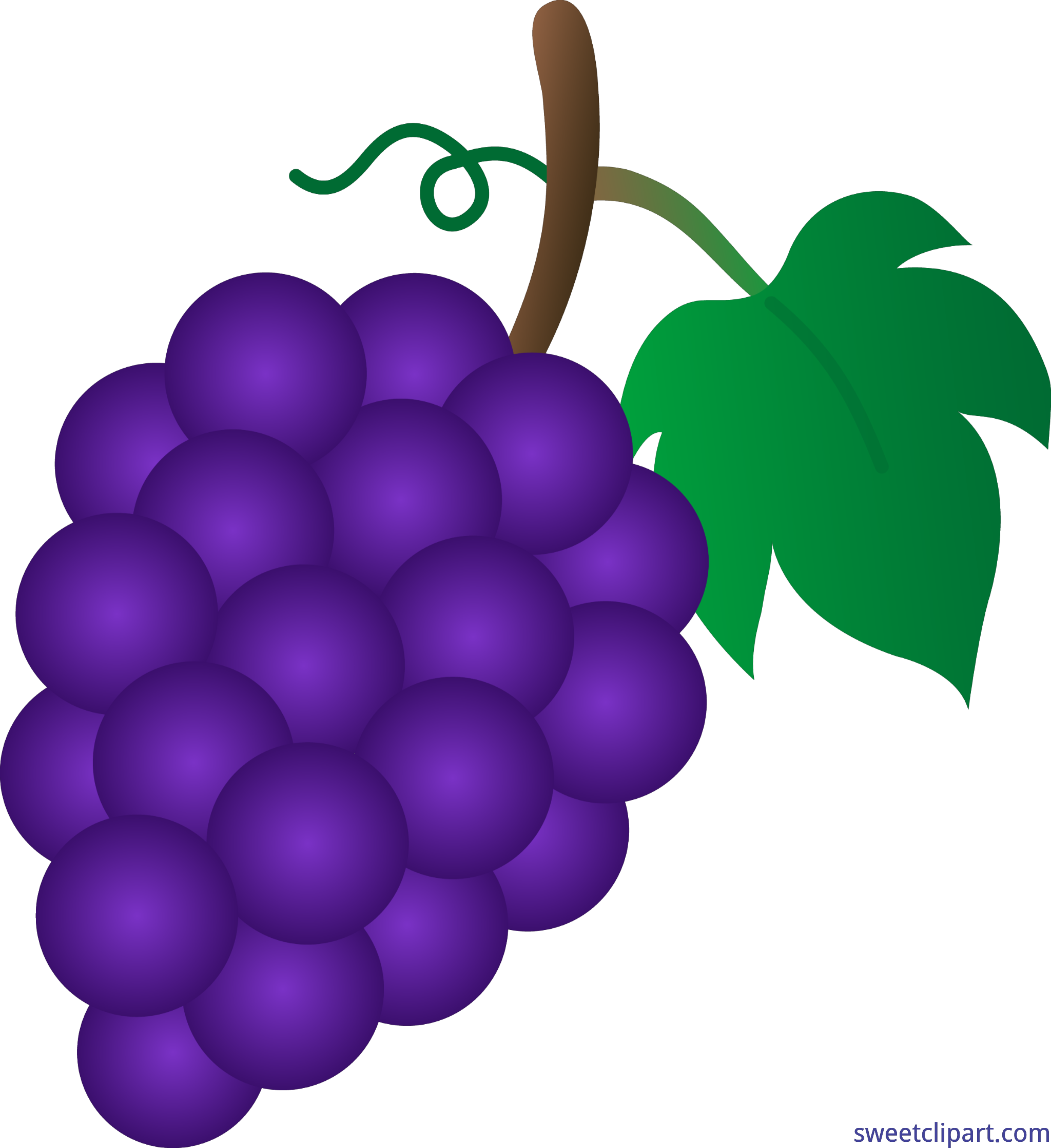 png royalty free stock Grapes clip art sweet. Violet clipart purple food