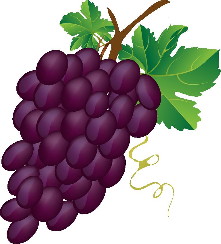 svg vector grapes grape bunch #118132468