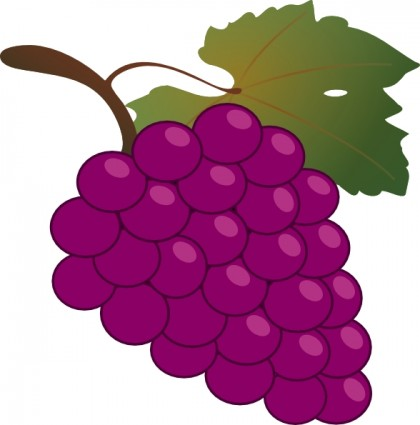 vector Free pictures download clip. Grapes clipart.