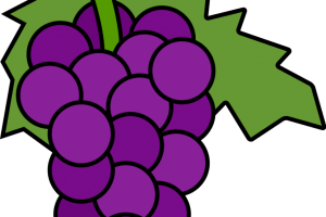 jpg free stock Ten free on dumielauxepices. Grapes clipart