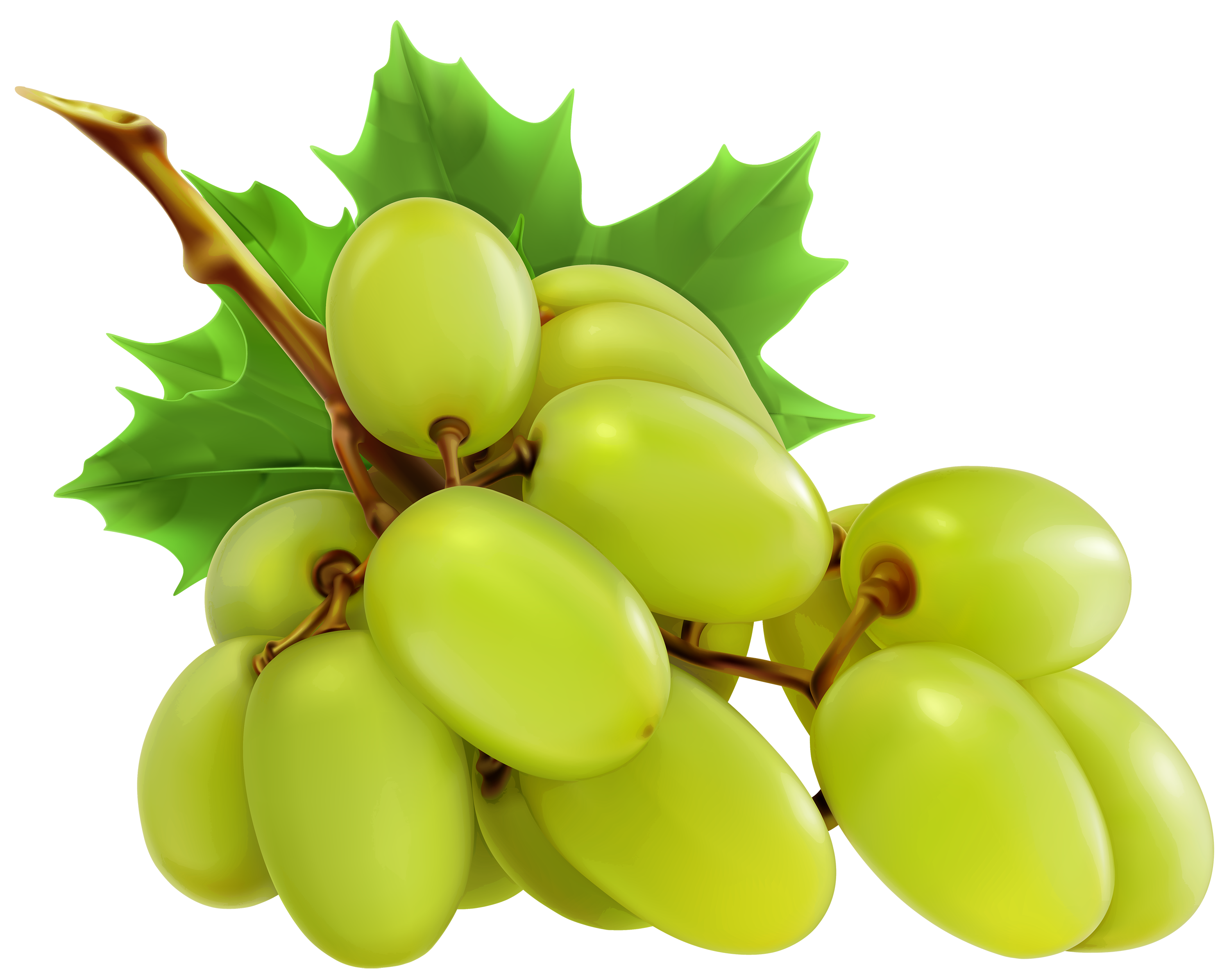 graphic black and white stock White png best web. Grapes clipart