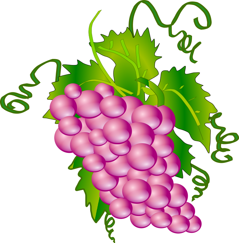 png library download Grapes clipart autumn fruit. Small free on dumielauxepices