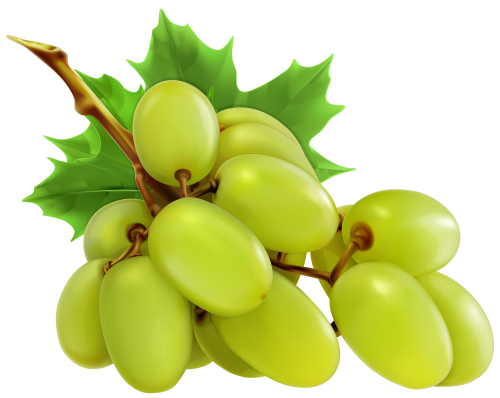 clipart library download White png frutas pinterest. Grapes clipart autumn fruit