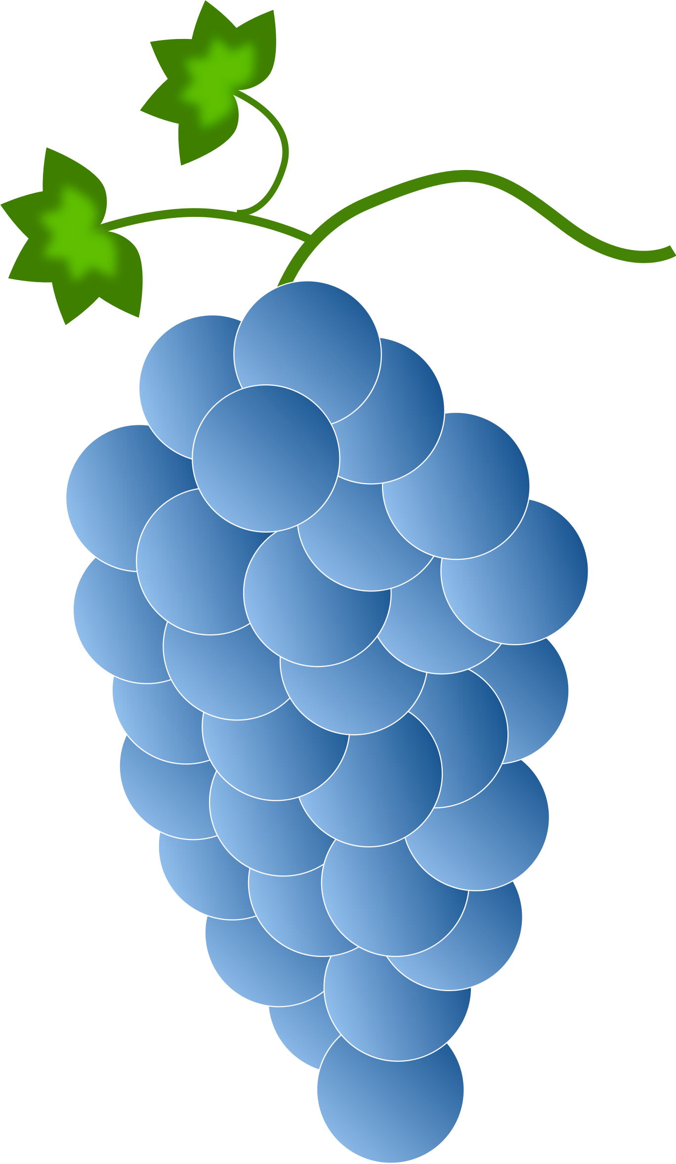 clip art black and white stock Big image png. Grapes clipart blue grape