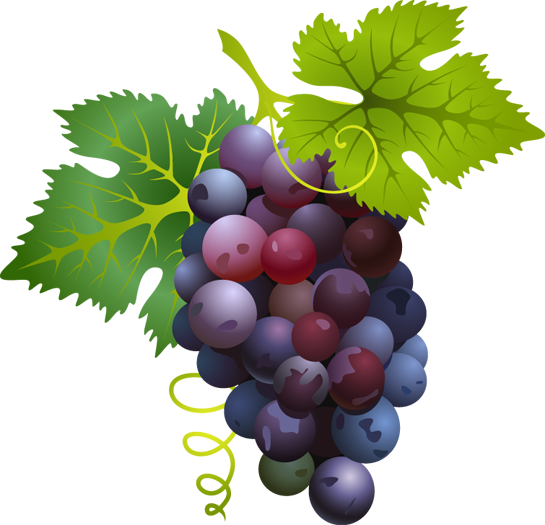 jpg black and white library Friuts free on dumielauxepices. Grapes clipart bread