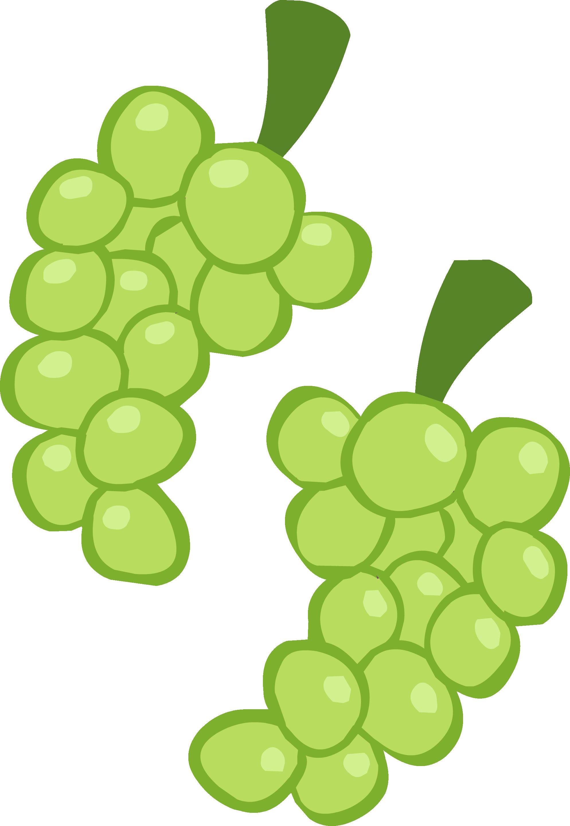 vector download vector grapes graps #118132256