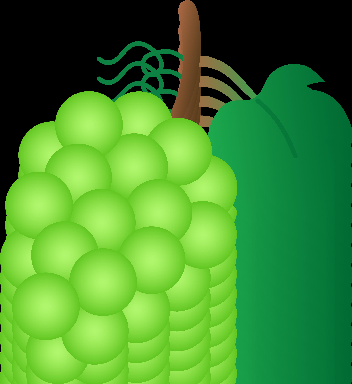 image free library Grapes clipart grape soda. Clip art exclusive bunch