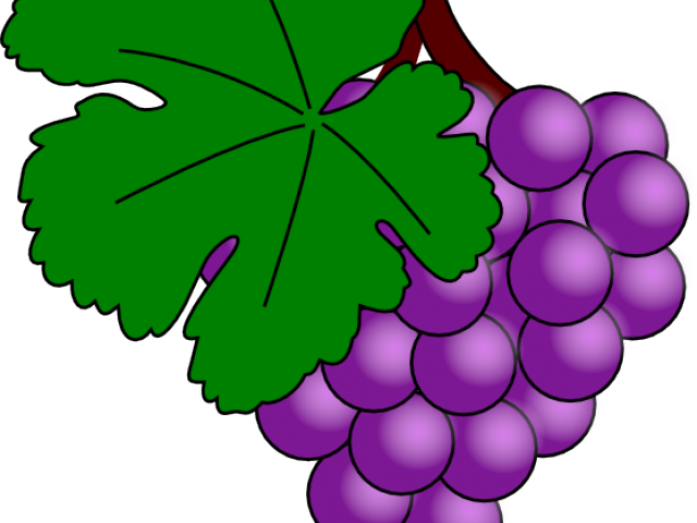 svg transparent download Ten free on dumielauxepices. Grapes clipart grape soda