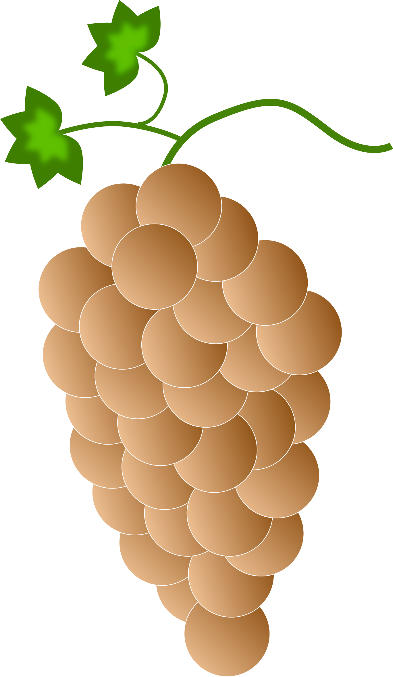 vector royalty free Big image png. Grapes clipart orange