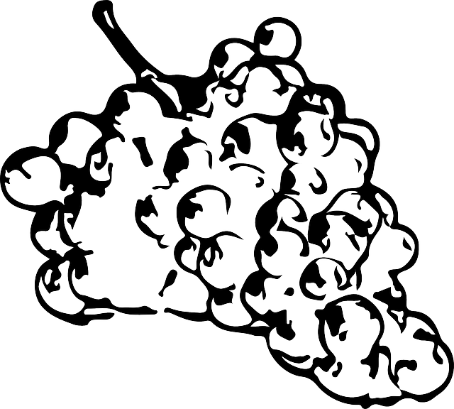 image library library Black and white top. Grapes clipart outline
