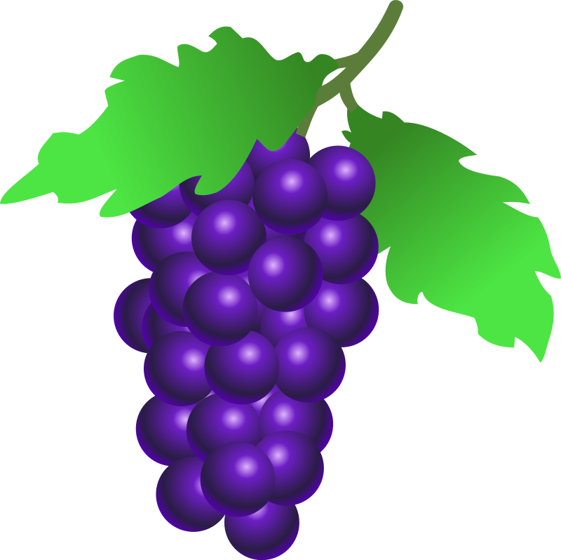 clipart free stock Png images transparent free. Grapes clipart real purple