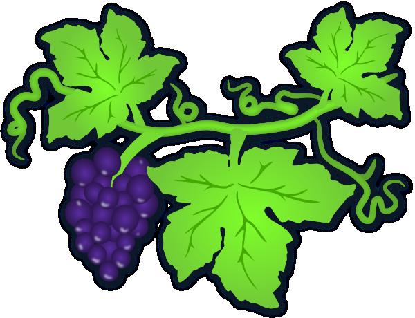 image free library Vine clip art at. Grapes clipart vineyard grape