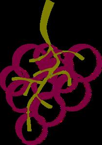 picture transparent download Grapes clipart vineyard grape. Wine google search pinterest