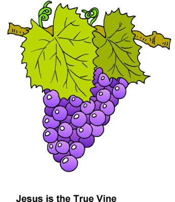 svg royalty free download Grapevine clipart. Image grapes jesus is