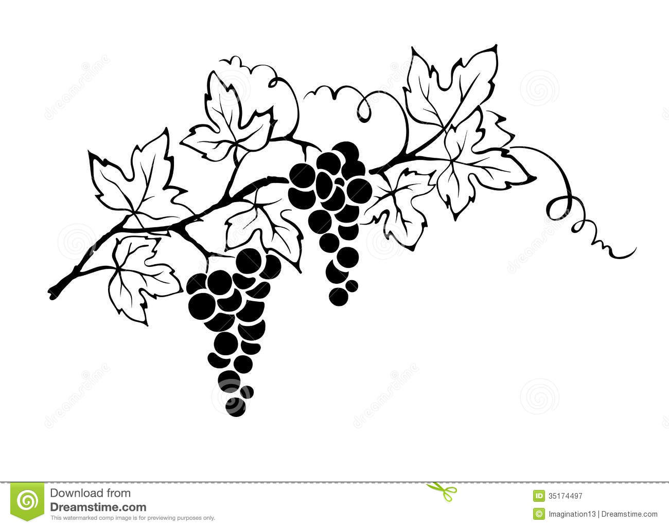 image freeuse stock Look at clip art. Grapevine clipart artwork
